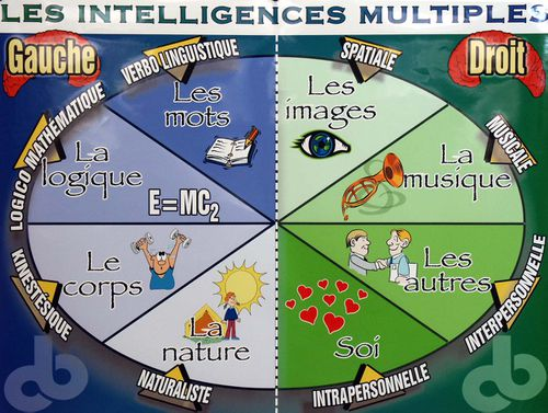 intelligences-multiples1.jpg