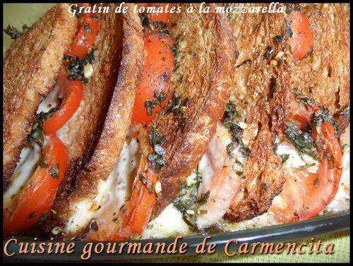 Gratin de tomates à la mozzarella 2 AM 0299-border
