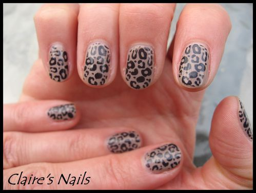 Tickle-my-France---y-leopard 0331