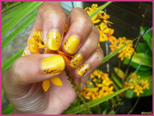 yellow-brown (2)