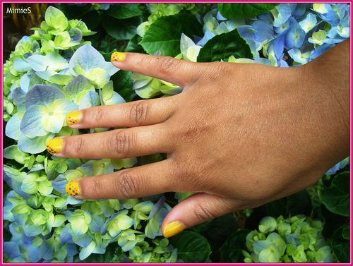 yellow-brown (6)
