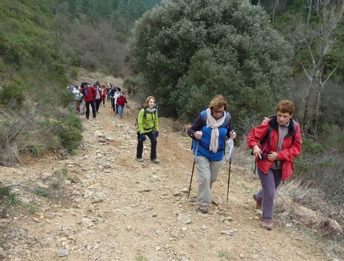2012-01-26-Tanneron- Les Cretes-37