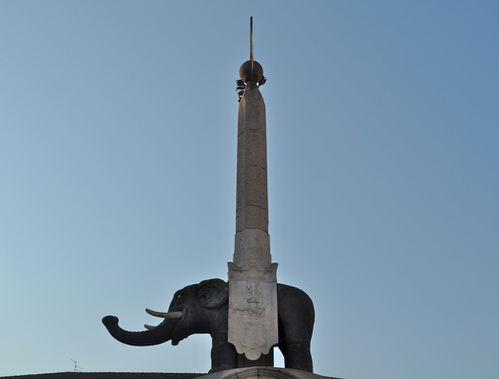 catania elefante