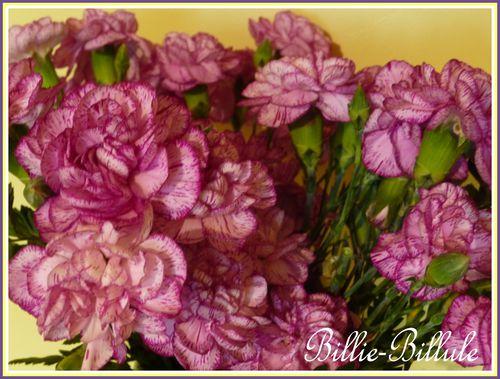 chiné violet 40 cm6