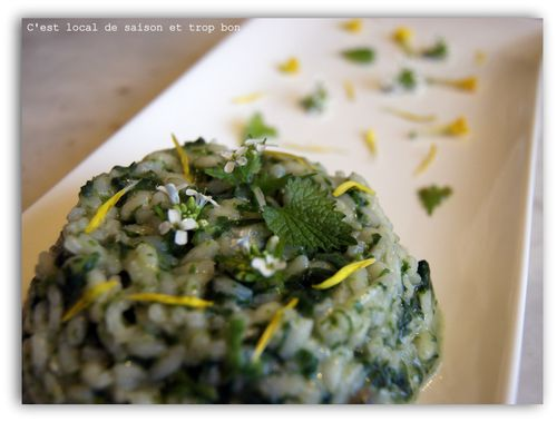 RISOTTO ORTIES 091
