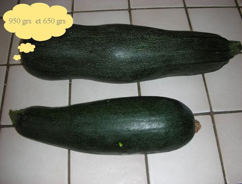 courgettes poids
