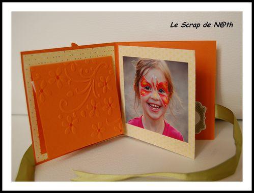 mini orange3