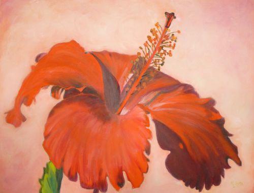 Ibiscus de Nicole Roux.