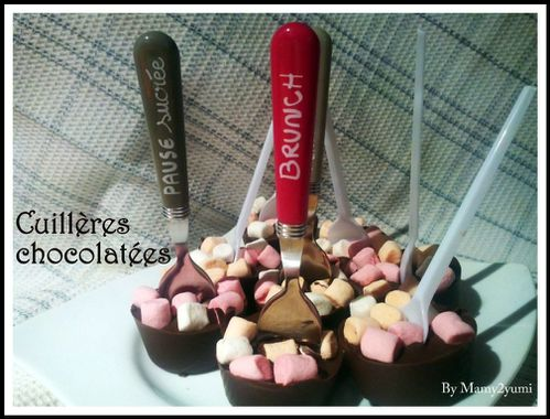 cuilleres-chocolatees