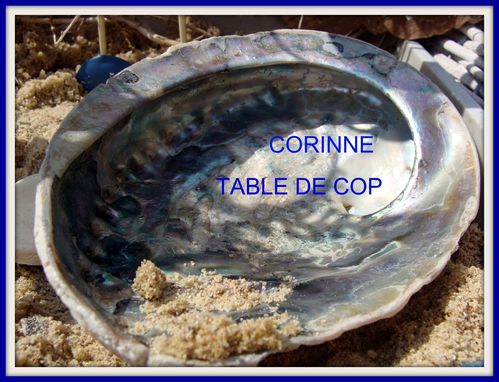 2010-08-12-CORINNE-TABLE-DE-COP.jpg