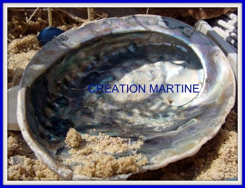 2010-08-12 CREATION MARTINE