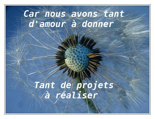 Amour-projets.jpg