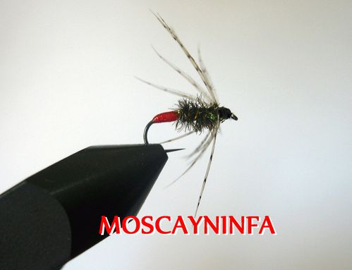 red-tag-soft-hackle.JPG