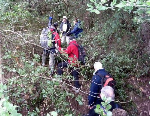 2011-02-24 Forêt de Palayson-007