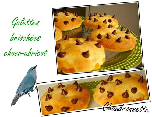 galettechocoabricot