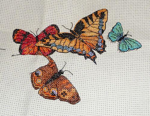 papillons_6.jpg