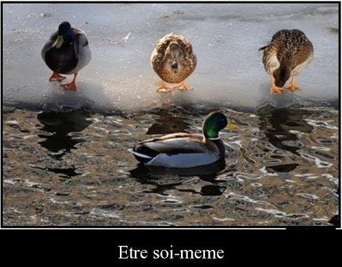 1341778416_Etre-soi-meme_lagouchka.jpg