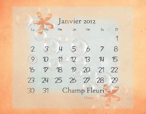 calend-janvier-com.jpg