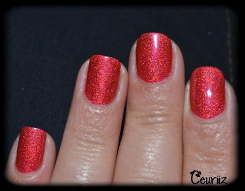 catherine arley holo 8003