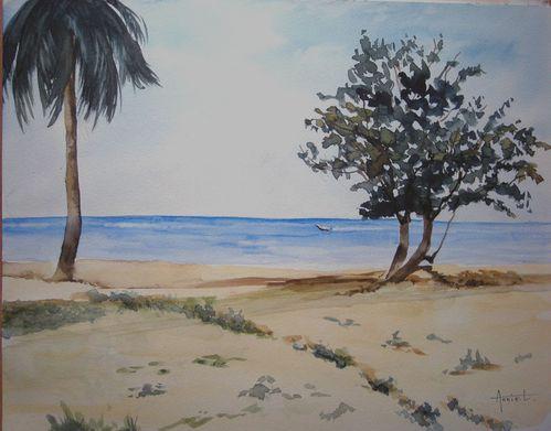 Paysages.La Martinique 4