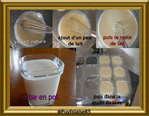 preparation-yaourt-nature.jpg