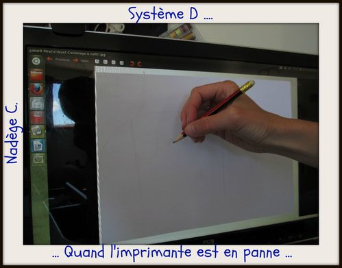 Systeme-D-Nadege.jpg