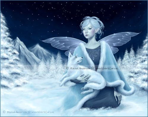 Rachel Anderson winter fairy