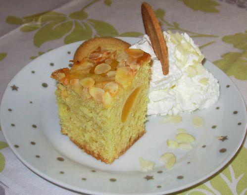 Moelleux amandes-abricots5