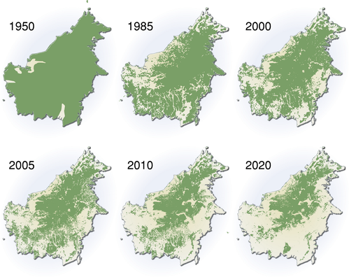 extent-of-deforestation-in-borneo-1950-2005-and-projection-.png