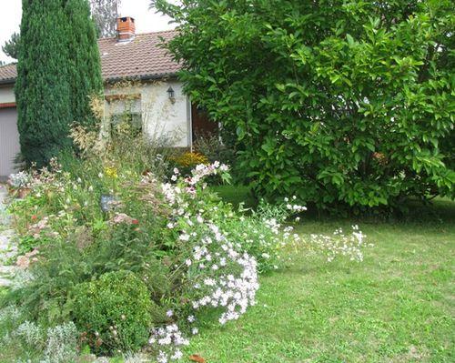 Le-Jardin-en-2010 4015
