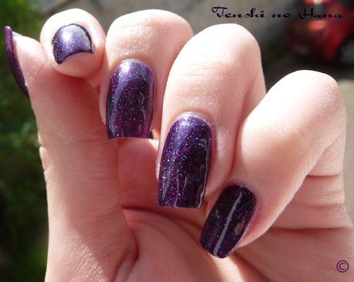 violet nuit 255 8