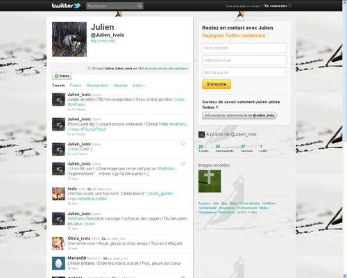 Twitter-Julen-janvier-2012.JPG