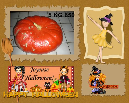 Courge 1