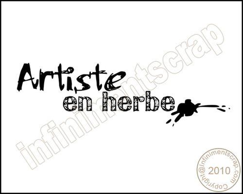ARTISTE-EN-HERBE.jpg