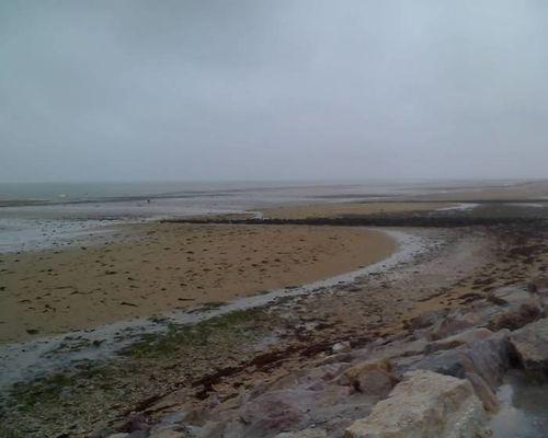 2010 08 15 plage