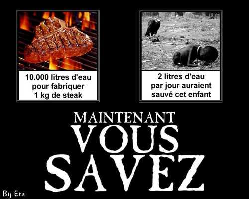 10_000_litre_pour_un_steak_001_fr_1024_728.png