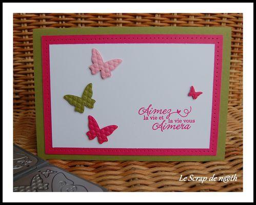 aimez-la-vie-papillons.jpg