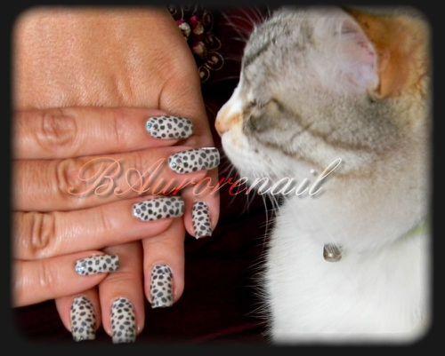 leopard-8.jpg