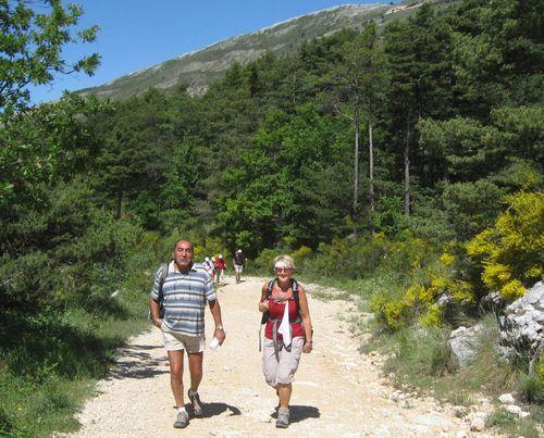 2011-06-09 Le Mont Lachens-010