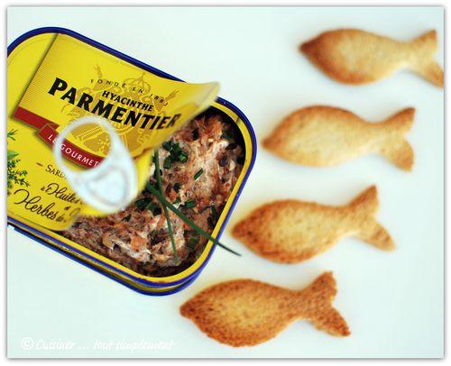 rillette sardine pesto de tomate 3