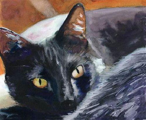 db_Alex_Carter-_Black_Cat1.jpg