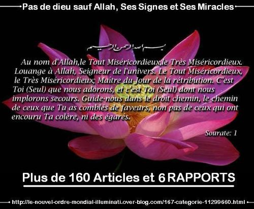 pas-de-dieu-sauf-Allah-et-ses-miracles-copie-1.JPG