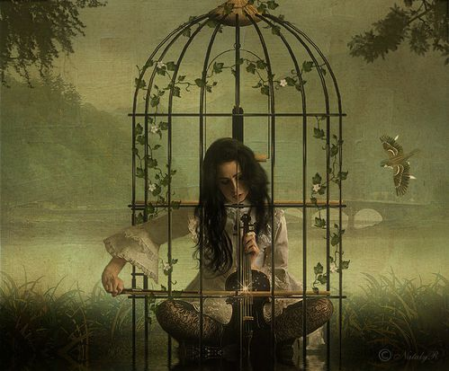 caged bird painting