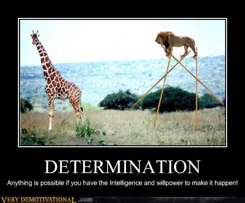 demotivational-posters-determination.jpg