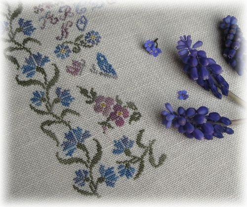 sampler aux bleuets 6 d 1