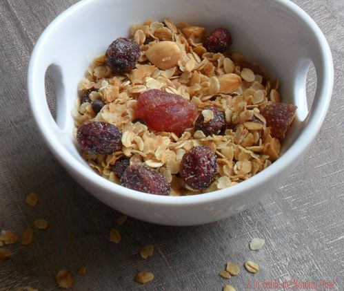 Granola-fruits-rouge.jpg