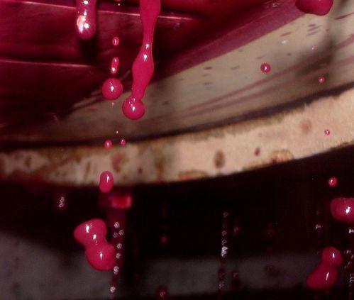 Pressoir Vin