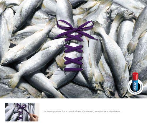 tenys-pe-fish.jpg