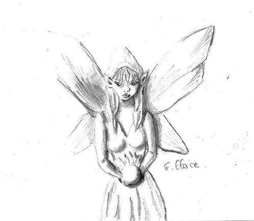 Esquisses dessins études et croquis : imaginaire - Le dessin du jour : petite fée au crayon 2b F. Claire - Claire Frelon artiste peintre profesionnel en Morbihan - Bretagne - France - galerie de peinture