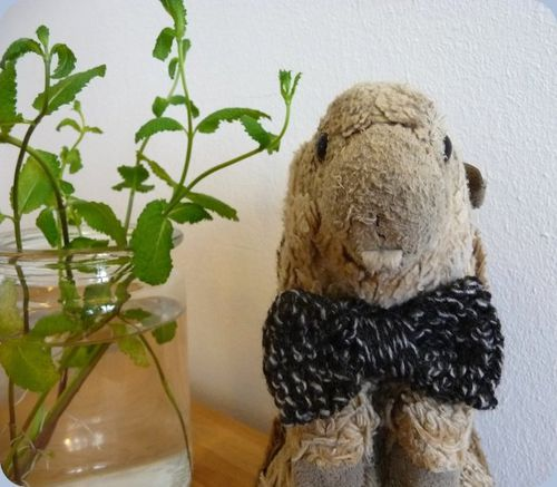 blog-tricot-noeud2